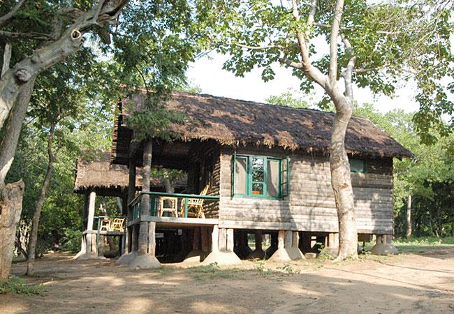 log huts at cauvery